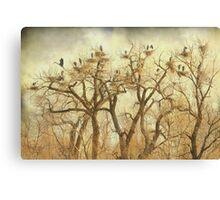 Great Blue Heron Hangout Fine Art Canvas Print