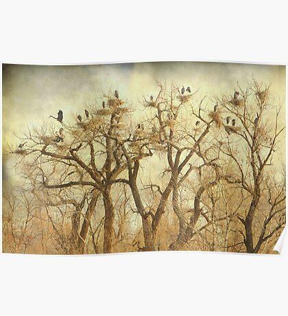 Great Blue Heron Hangout Fine Art Poster