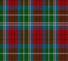 01466 Teirney Fashion Tartan Fabric Print Iphone Case by Detnecs2013