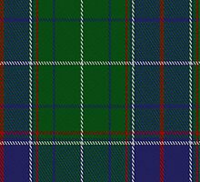 01471 Tennessee State District Tartan Fabric Print Iphone Case by Detnecs2013