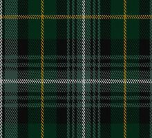 01473 Terre D'Ecosse Fashion Tartan Fabric Print Iphone Case by Detnecs2013