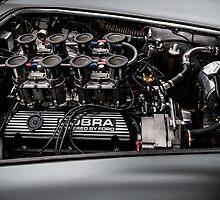 Cobra Engine by Matt Malloy