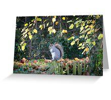 Squirrel Portrait Greeting Card