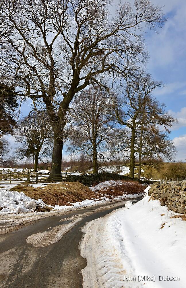 Winter still clings on by John (Mike)  Dobson