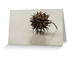 Seed Reflection Greeting Card