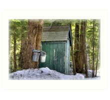 Two Taps and an Outhouse Art Print