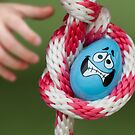 Chicken Egg by Randy Turnbow