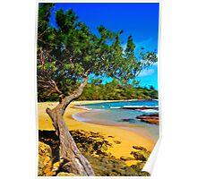 Moloaa Beach Kauai Poster