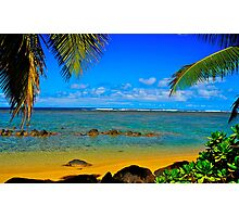Island Getaway Photographic Print