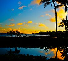 Tropical Reflections by Tracey McQuain