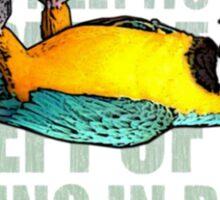 EX-Parrot Sticker