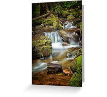 Below Strickland Falls, South Hobart, Tasmania #7 Greeting Card