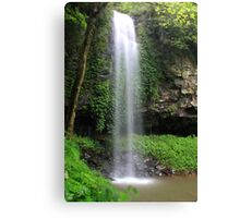 Crystal Falls, Dorrigo National Park Canvas Print