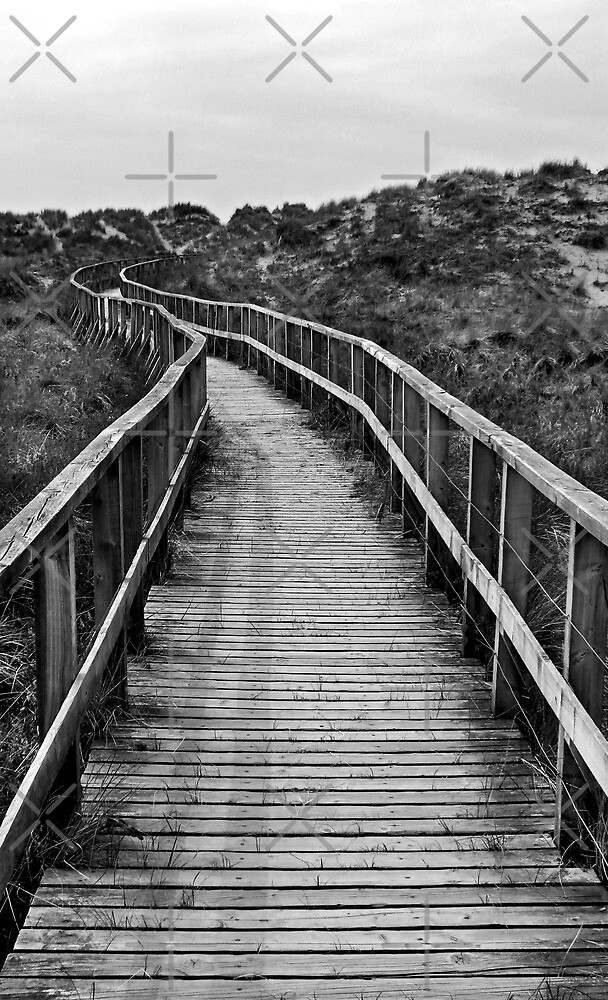 The Boardwalk by Yampimon