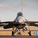 USAF F16 Falcon. Avalon Air Show 2013 by palmerphoto
