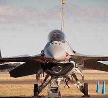 USAF F16 Falcon. Avalon Air Show 2013 by palmerphoto