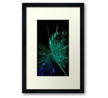 Black Shock Crystal Framed Print