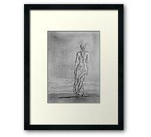 Lonely walk on the seashore Framed Print