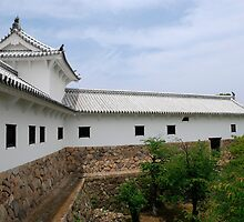 Building at Himeji Castle, Japan by jojobob