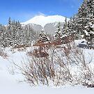 Jacque Peak by Eric Glaser