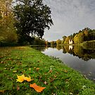 Painshill Lake, Autumn by Rachael Talibart
