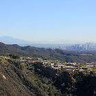 View East from East Topanga Fire Road - Pacific Palisades by Tedd Wenrick