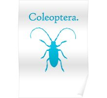 Coleoptera (Blue Longhorn Beetle) Poster