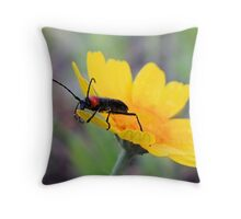 Red-black False Blister Beetle Gathering Pollen Throw Pillow