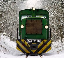 Little forest locomotive by Marcidog