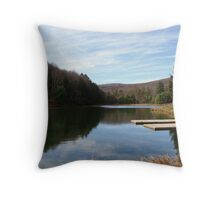 It's a good day to be alive! Throw Pillow