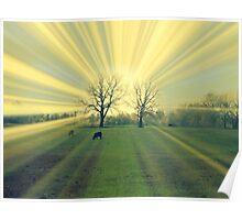Magic Cow Pasture Poster