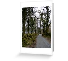 Country Lane on Dartmoor Greeting Card