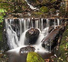 Roadside Waterfall by George Davidson
