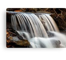 Albany Rural Cemetery Falls Canvas Print