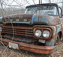 old Ford truck2 by Kathleen Small Wilkie