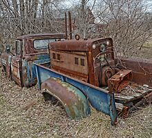 old Ford truck3 by Kathleen Small Wilkie