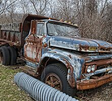 old Ford dump truck by Kathleen Small Wilkie