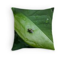 Greenbottle on a green leaf Throw Pillow