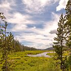 Beautiful meadow & stream in Yellowstone - HDR by Brian D. Campbell