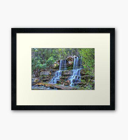 Zilker Botanical Garden Framed Print