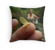 Mayfly and Crystal Throw Pillow