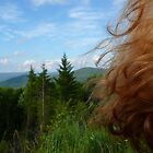 Breeze in the Mountains by Chad Burrall