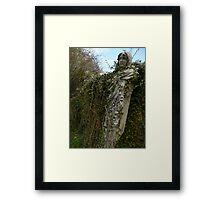 Howard Hill Statue Framed Print