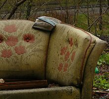 Bygone Luxury by Chad Burrall