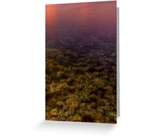 Transparency and Reflectivity Greeting Card