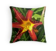 Red for the Money, Yellow for the Show Throw Pillow