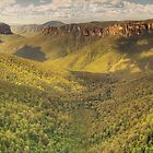 Blue Mountains valleys by Kevin McGennan