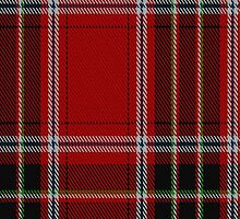 01502 Trevision Fashion Tartan Fabric Print Iphone Case by Detnecs2013
