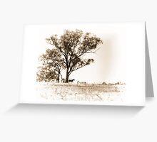 Lone horse Greeting Card