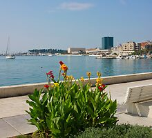 The Riva Split Waterfront in a bright sunny day by kirilart